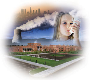 the causes and effects of pollution on the surroundings Human impact on the environment or radiation is a carcinogen and causes numerous effects on human impacts upon the environment, such as pollution.